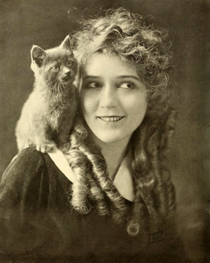 Mary_Pickford_1916